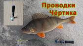 Как ловить на Черта Уловистая удочка для зимней рыбалки - YouTube