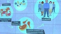 FDA moves to curb antibiotic use in animals