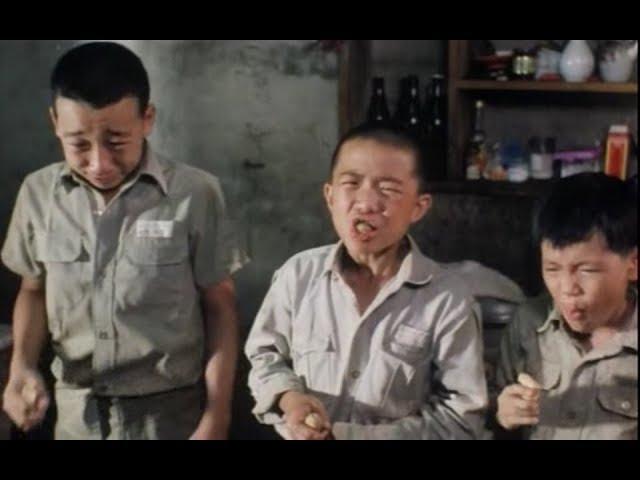 【宇哥】儿时无数次被催哭的台湾电影,听主题曲就已泪流满面《鲁冰花》