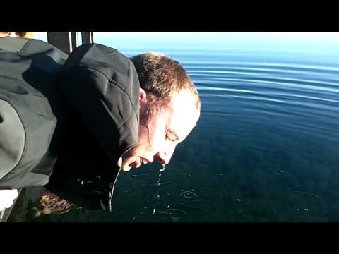 Robbie B. dunks his head in Cold Lake Tahoe