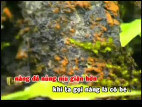 karaoke trich doan Tay Thi -ca voi 545.mp4