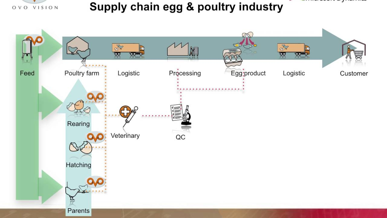 hight resolution of egg poultry industry supply chain software