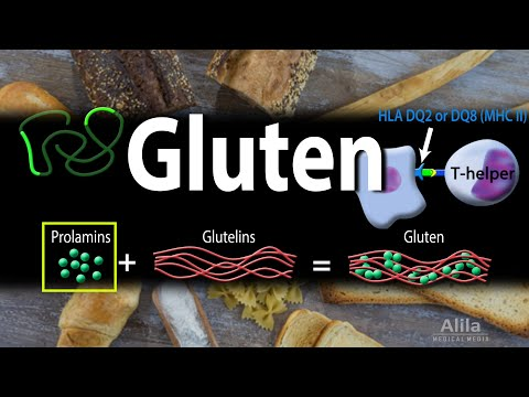 Gluten and Gluten-Related Disorders, Animation