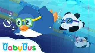 ❤ Panda Sports Games  - Swimming | Animation For Babies | BabyBus