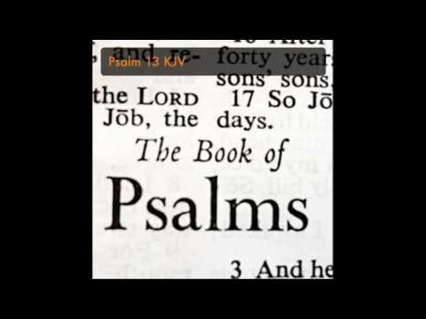 Psalm 13 KJV