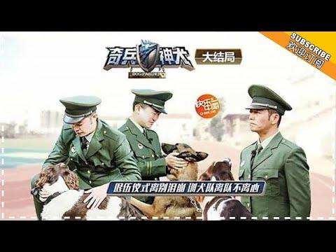 《奇兵神犬》第10期20180105:大结局 杨烁都乐
