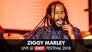 Ziggy Marley World Revolution live at Exit festival 2018! Ziggy Mar...