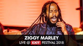 EXIT 2018 | Ziggy Marley World Revolution Live @ Main Stage