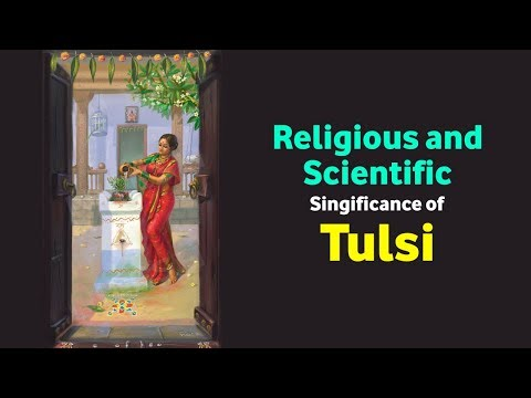 Religious and Scientific Singificance of Tulsi | Goddess Lakshmi Avatar | Tulsi Leaves Benefit