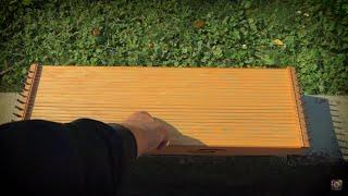 Monocordo in slow motion (monochord)