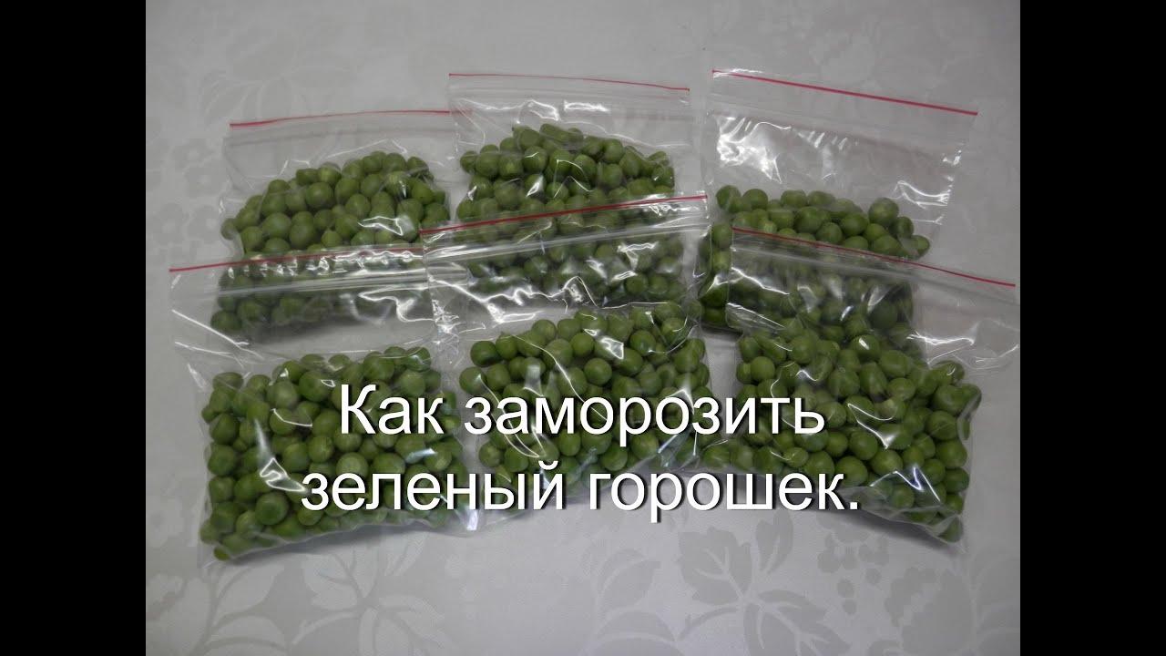 Замораживание зеленого горошка на зиму в домашних условиях 543