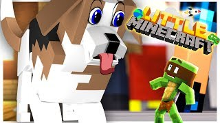 SHRINKING TO A BUG SIZE!! - Little Minecraft Series #1 w/ TinyTurtle