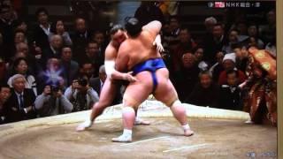 2016年初場所で琴奨菊が日馬富士を破り12連勝で単独TOP!!!