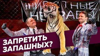 Зоозащитники против дрессировщиков и новый закон о животных / Редакция