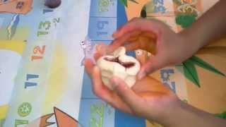 45 Piece Play Doh Zoo Adventure Elephant Turtle Owl Playdough Molds Aventura Zoológico Plastilina