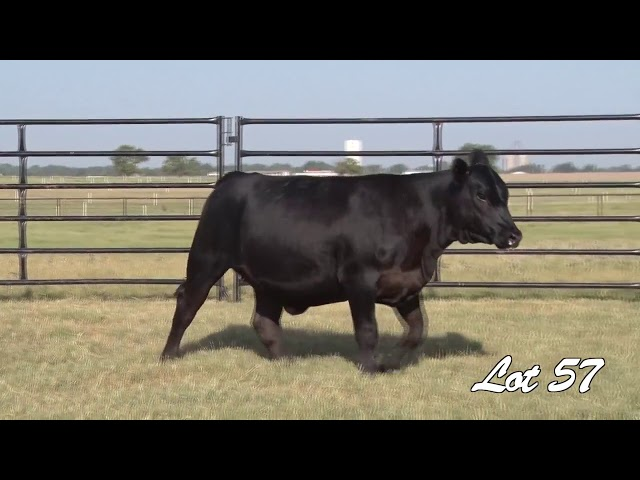 Pollard Farms Lot 57