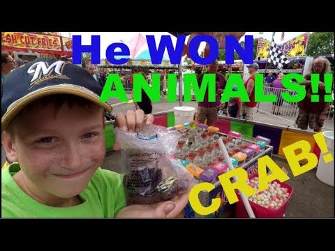 He WON Fair ANIMALS!!