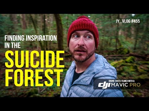 Finding inspiration in Japan's Suicide Forest