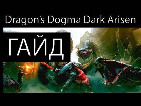 Вам лень разбираться в Dragon's Dogma: Dark Arisen