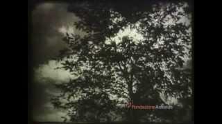 Niccolò Paganini di Amleto Pannocchia 1948 ca