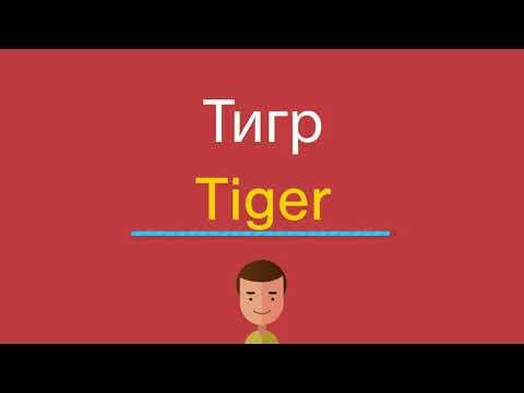 Как по английскому тигр