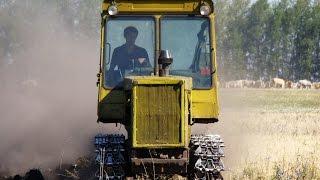 One soldier in the field - DT 75ml plow in field /// Один в поле воин - ДТ-75МЛ пашет в поле