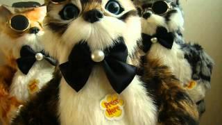 Игрушка поющий кот 12 песен