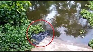 আল্লাহর নির্দশন দেখুন ভিডিওটিতে | Earthquake in Water