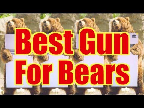 Best Gun For Bear