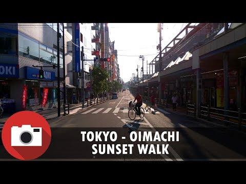Walking in Oimachi