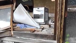奥新川の廃屋1