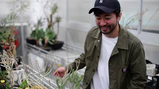 Botanize Shirokane アーバングリーンSPOT!屋上温室とカフェを楽しむ thumbnail