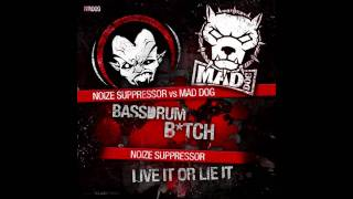 Noize Suppressor Vs Mad Dog - Bassdrum Bitch [HQ]