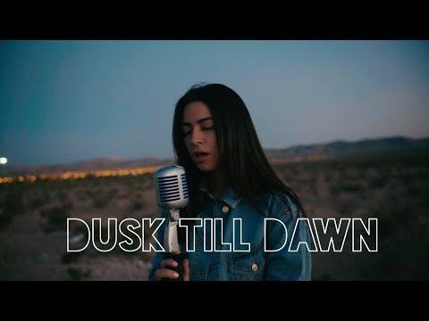 Dusk Till Dawn - Zayn & Sia (Cover)