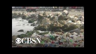 Plastics pollution worsens despite efforts to reduce problem