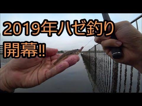 2019年ハゼ釣り開幕!!(大井ふ頭中央海浜公園 夕やけなぎさ)