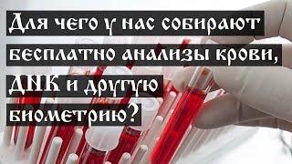 Для чего у нас собирают бесплатно анализы крови, ДНК и другую биометрию?