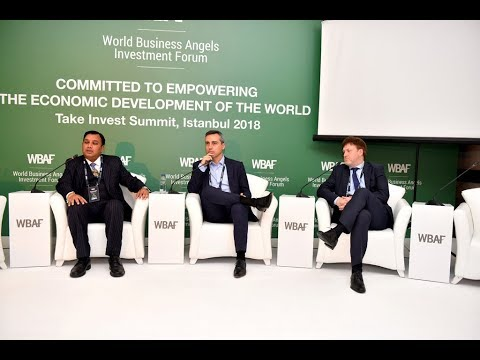 WBAF 2018 Panel: The role of corporates in supporting angel-backed businesses