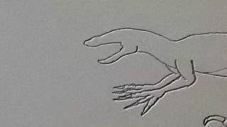 How to draw ep. 2 drawing a RAPTOR