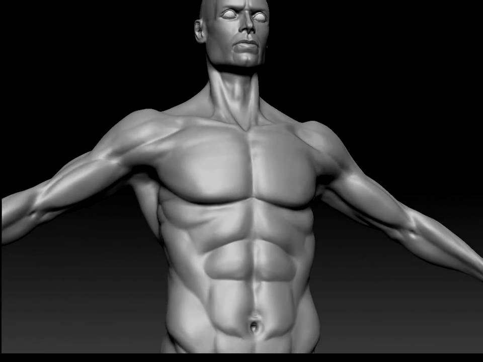 heroic male anatomy sculpt zbrush - YouTube
