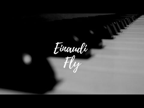 Einaudi fly