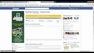 Aplicación para crear Cupones exclusivos para Fans de tu Página de Facebook