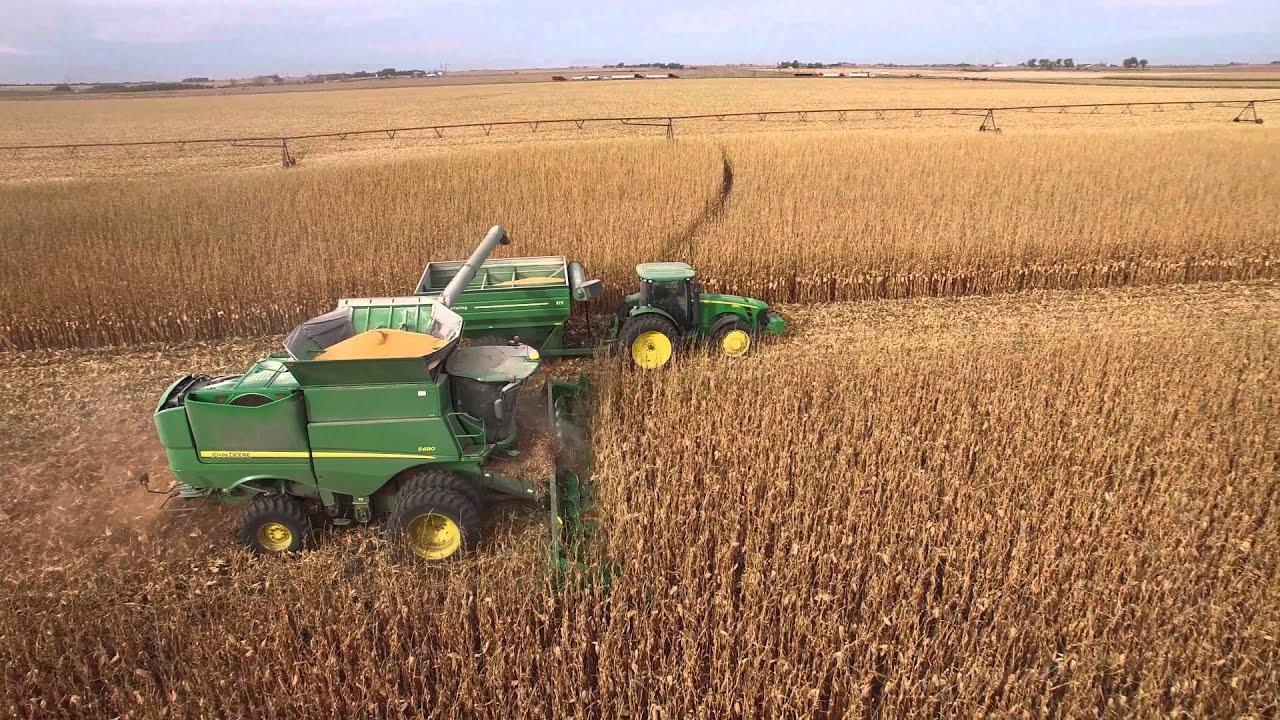 Fall Deer Wallpaper Steingard Corn Harvest Youtube