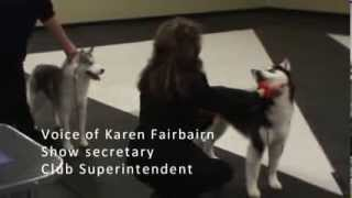 Prince Albert Kennel & Obedience Club Dog Show