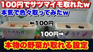 【野菜が景品】クレーンゲームで本物の野菜が景品の100円で取れるので大収穫祭してみらヤバすぎる結果になった俺は発狂したけど何か質問ありますか?笑笑