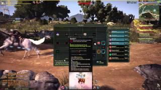 Black Desert Online:Plum(Сакура) Обзор
