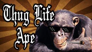 Thug Life Ape