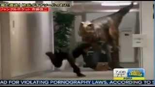 ▶ Japanese Dinosaur Prank Video Japanese Man Terrified By 'Dinosaur' On TV Show Japanese