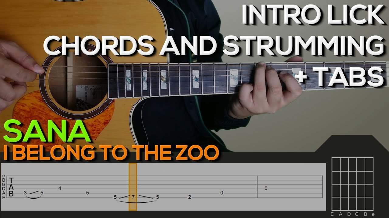 I Belong To The Zoo Sana Guitar Tutorial Intro Chords And