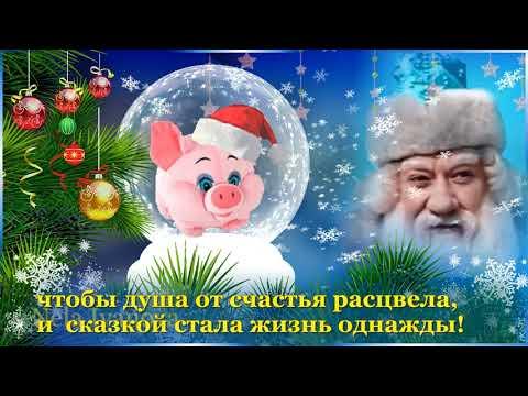 Прикольное поздравление С Новым 2019 годом - Смотреть видео без ограничений